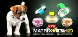 Ultra Led Max & Molly