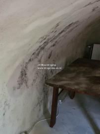 schimmel op muren in de kelder