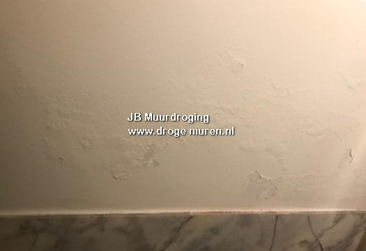 verf blaasjes op de muur