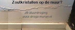 Optrekkend vocht? www.drogemuren.nl