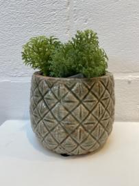 Pot bruin licht groen
