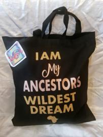 I Am my Ancators Wildest Dream