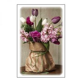 Blanco tulpen