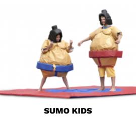 Sumo worstelen huren voor kinderen