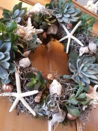 Krans met schelpen & vetplantjes
