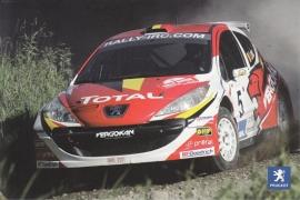 207 IRC Rallye car, A6-postcard, Belgium, 2009