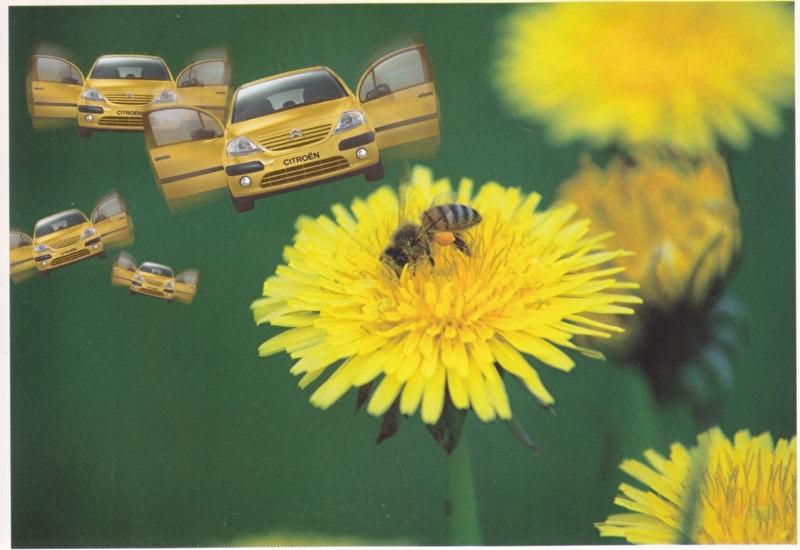 C3 Promocard, # 2840, Italian advertising postcard, # 6
