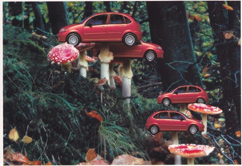 C3 Promocard, # 2843, Italian advertising postcard, # 9
