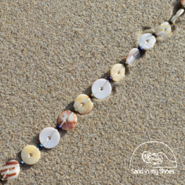 SEASHELL SIMPLE ALL-IN-ONE
