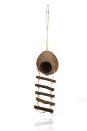 Kokosnoot Huisje met Ladder 30 cm