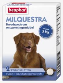 Milquestra wormtabletten hond 2 tabl.