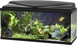 Ciano Aquarium 80 LED - 80x30x41,5cm €125,-