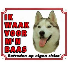Waakbord Husky