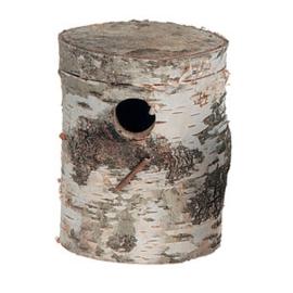 Berkenblok Extra Groot - Valkparkiet - 35 x 14 x 6cm