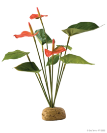 Exo Terra Anthurium Bush - 30cm