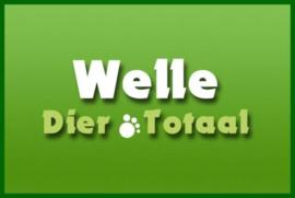 Foto's Winkel