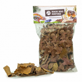 Back Zoo Nature Discovery Leaves for Reptiles 50gr