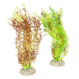 Plant Egeria Densa M 25cm