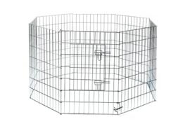 PuppyRen (8 Panelen van 91x60cm)