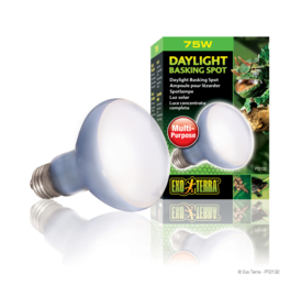 Exo Terra Day Glo Basking Spot Lamp 75W