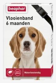 Vlooienband hond zwart 1st