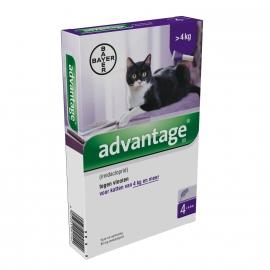 Advantage kat 80 (katten boven 4kg)