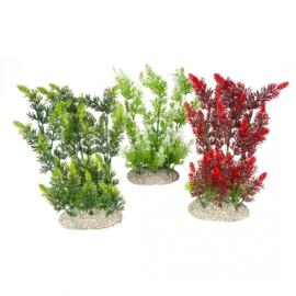 Plant Elodea Densa XL 37cm