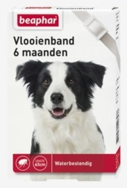 Vlooienband hond wit 1st