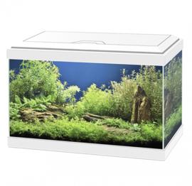 Ciano Aquarium 20 Classic Wit - 40x20x24,8cm €45,-