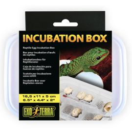Exo Terra Incubatie Box voor Reptielen Eieren