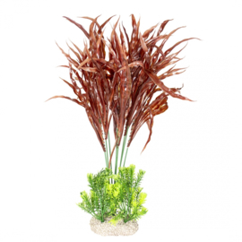 Plant Java Fern XL 45cm