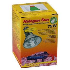 Lucky Reptile Halogen Sun 75w