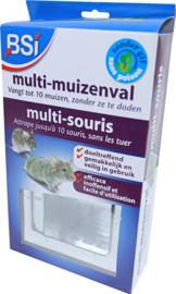 Multi-Muizenval