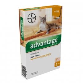 Advantage kat 40 (katten onder 4kg)