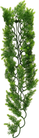 Zoomed Natural Bush - Malaysian Fern - Small - 36cm