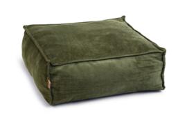 Velveti Ligkussen Kat Fluweel Groen 50x50x20cm