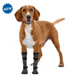 Pootbescherming Hond Walker Socks - XS