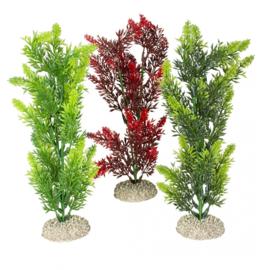 Plant Elodea Densa M 25cm