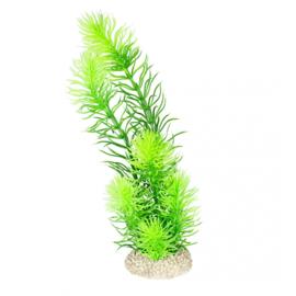 Plant Hornwort L 32cm