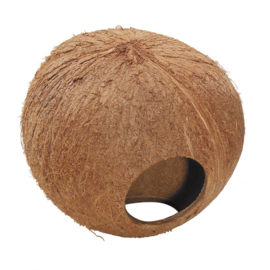 Coconut Globhouse 130mm