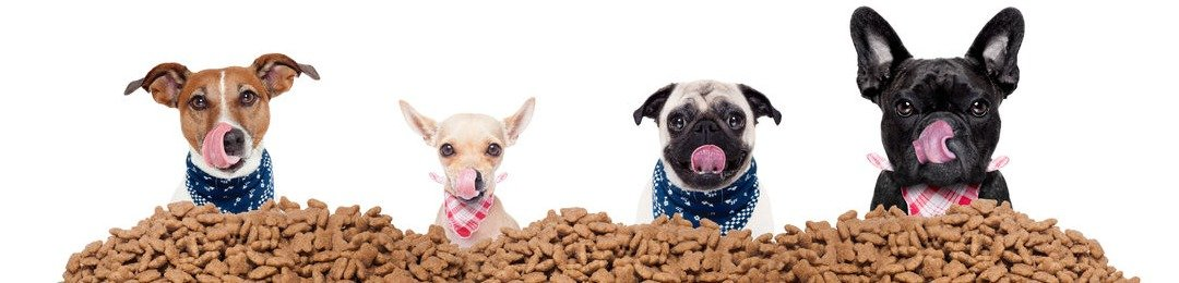 Hondenvoeding en droogvoer