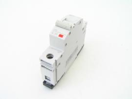 OEZ Minia LPN C10