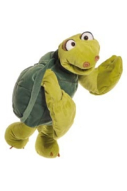 schildpad Aristoteles W588