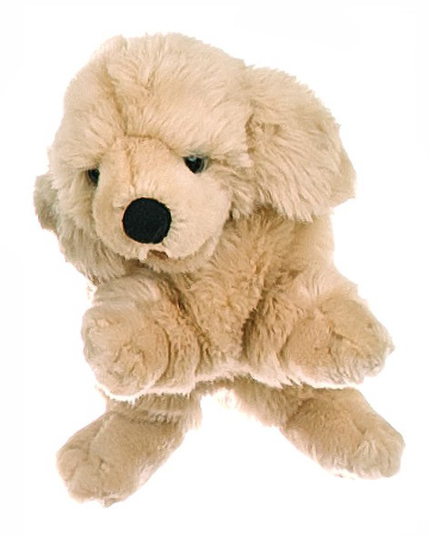 hond labrador pup W079