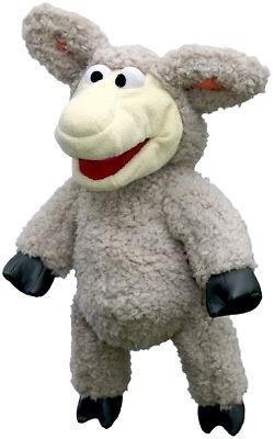 schaap Wolle SE111
