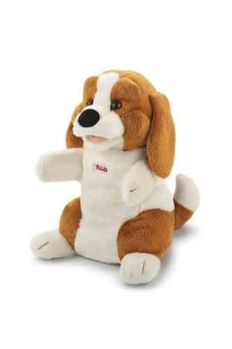 hond trudi 29928