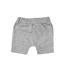 SS | Shorts | Grey Melange | 68