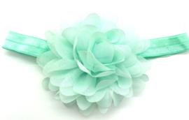 Babyhaarbandje mintgroen met chiffon bloem