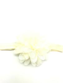 Babyhaarbandje crème met chiffon bloem