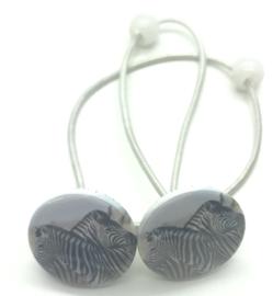 ELastiekjes met buttons zebra